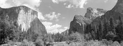 valley view pano 1 (john enea) Tags: g617 fp4 pyro yosemite