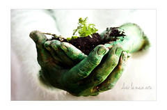 have the green hand - avoir la main verte (Chocolatine photos) Tags: mains vert verdure plante photo photographesamateursdumonde pdc nature naturebynikon nikon citation expression coloré flickr