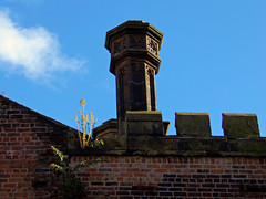 Reaching for the Sky, Bombed Out Church, Liverpool, England (teresue) Tags: 2017 uk unitedkingdom greatbritainengland merseyside liverpool bombedoutchurch lookingup stlukeschurch