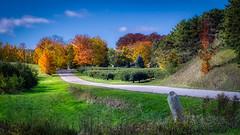 Color Tour (downstreamer) Tags: canonfl55mmf12 leelanau northport autumn landscape leaves road trees michigan unitedstates us