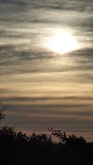 Herfst 2018 25 (megegj)) Tags: gert sunrise zonsopkomst herfst herbst automne autumn fall