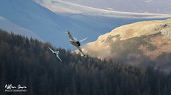 RAF Typhoon Apollo Flight low level at Thirlmere (NDSD) Tags: low level typhoon eurofighter fgr4 thirlmere cumbria flying jet raf lake district plane sky aircraft aviation