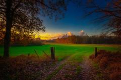 Walk over the fields (radonracer) Tags: