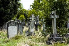 West Norwood Cemetery (London Less Travelled) Tags: uk unitedkingdom britain england london south lambeth norwood westnorwood cemetery urban city grave gravestones memorial tomb tombs cross stone headstone
