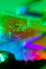 20181013-092 (sulamith.sallmann) Tags: natur pflanzen analogeffekt analogfilter baum berlin blur botanik bunt deutschland effekt effekte farbenfroh filter folie folientechnik pflanze reinickendorf tegel unscharf sulamithsallmann