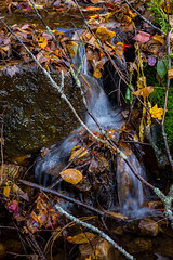Une petite source (Patrick Boily) Tags: eau water chute riviere automne autumn leaves red feuilles river