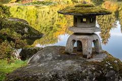 Seattle Japanese Garden (jeff's pixels) Tags: seattlejapanesegarden garden autumn seattle pnw washington park arboridum nikon d850 nature outdoors wander beauty lantern reflection pond