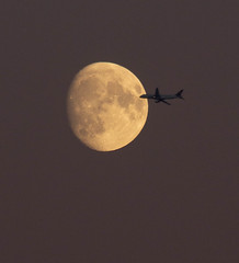 Dusky Moonrise Fly-by 21 Oct 2018 (Sculptor Lil) Tags: london waxinggibbous aeroplane moonrise handheld moon airplane canon700d moonflyby dusk