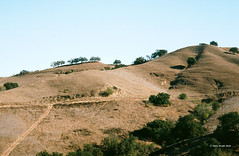 Yet Another Image of Oaks Lanscape (markjwyatt) Tags: chinohills california hills oaks grass trails road sky contaxiia sonnar50mmf2 ektar100 film