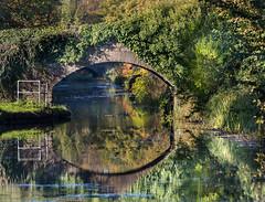 Tennant Canal (pjbranchflower) Tags: neath abbey tennant canal autumn reflection