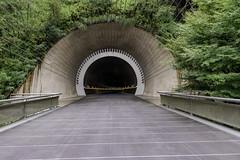 AGQ-20180927-0027 (AGQue) Tags: 2018 asia autumn fall gmt0900tokyostandardtimezone japan koka september shigaprefecture travelphotography bridge museum suspensionbridge tunnel vacationing kokashi jp