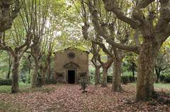 chiesetta abbandonata (Alberto Cameroni) Tags: toscana valdicava ponsacco chiesetta viale platani leica leicaxtyp113 x typ 113