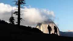 Silhouettes (Kirk Lougheed) Tags: california glacierpoint halfdome usa unitedstates yosemite yosemitenationalpark cloud landscape nationalpark outdoor park silhouette sky spring tree