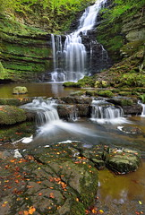 Early autumn (images@twiston) Tags: scaleber foss force waterfall cascade stepped settle yorkshire northyorkshire ribblesdale dales national park yorkshiredalesnationalpark gorge green moss beck stream water river autumn fall beech leaves landscape imagestwiston ultrawide ultra wideangle wide angle godsowncountry limestone stone mystic magical rock rocks boulder boulders stones le longexposure godsowncounty