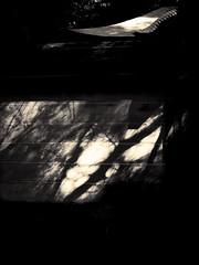 Danser avec le soleil - 06