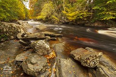 River Tilt, Blair Atholl (Daniel Giza) Tags: river tilt blair atholl autumn colours water waterfall tree landscape scotland perthshire rock stream canon 50d sigma 1020 wonderfulwaterlandscapes canon50d sigma1020 rivertilt blairatholl milkywater nature fall red gnarled moss mossy root leaf yellow orange forest bark branch bracket carpet leafs gold colourful enchanted dream land october