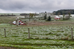 Druck Farm-First Snow Sabinsville (dfbphotos) Tags: 2018 october fall tioga buildingsarchitecture barn farm nature snow sabinsville tiogacounty places druckfarm butlerroad pa usa