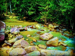 Tanjung Ipoh, Negeri Sembilan https://goo.gl/maps/Qi6Smr2W9VS2 #travel #holiday #traveling #trip #Asian #旅行 #度假 #亞洲 #馬來西亞 #วันหยุด #การเดินทาง #ホリデー #휴일 #여행 #праздник #путешествие #大自然 #nature #河 #River #강 #sungai #川 #река #แม่น้ำ #reizen #vakantie #voya (soonlung81) Tags: trip river سفر วันหยุด vacanza fluss flod malaysia путешествие sungai resa vakantie 휴일 馬來西亞 旅行 reise nature แม่น้ำ semester ulubendul asia 여행 asian voyage 大自然 reizen 度假 traveling 강 río urlaub 川 река ホリデー การเดินทาง holiday праздник fiume rivière rivier عطلة 河 vacances fiesta viaggio 亞洲 viaje travel