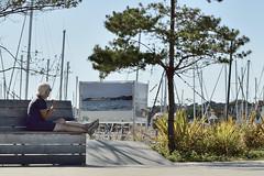 Regard sur la mer (D[m]c) Tags: bench banc street crouesty morbihan expo golfdumorbihan