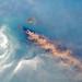 Krakatau's Plume