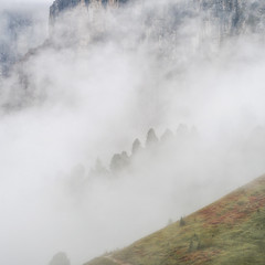 ...even the Colours appear... (Ody on the mount) Tags: anlässe berge bäume dolomiten em5ii felsen felswand fototour gipfel mzuiko40150 nebel omd olympus pflanzen sellamassiv urlaub wolken clouds mist mountains rocks trees vertical vertikal
