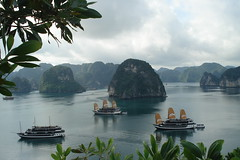 Halong Bay.2 (veronictravel) Tags: 2018advisorphotocontest cloudy rocks boulders boats water bodyofwater mountains greenery leaves trees ocean halongbay bayinvietnam northeastvietnam rainforests cátbànationalpark junkcruise sightseeing titopisland climb hiking breathtakingviews senseofplace mainbeachtravel