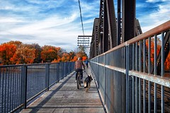 Autumn (stephaneblaisphoto) Tags: architecture bridge man made structure built change cloud sky connection day footbridge full length leisure activity lifestyles men nature one person outdoors plant railing real people rear view transportation tree walking