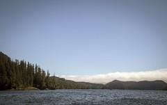 Tofino, Vancouver Island (Snowy5) Tags: shropshire vancouver island city canada nature wildlife eagle seal bear landscape canon 7d ii snowy5