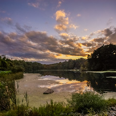 Nosenzo Pond Sunset_4494-4496 (smack53) Tags: smack53 nosenzopond westmilford newjersey sunset clouds water pond sky evening eveningsky outside outdoors autumn autumnseason fall fallseason nikon d100 nikond100 reflections lake