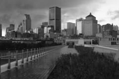 Ploc, ploc, ploc sur la ville (Papaye_verte) Tags: cityscape orage rain storm pluie montréal québec canada