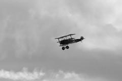 IMG_5213 BW edit (routemaster2217) Tags: clactononsea clactonairshow clactonairshow2018 airshow airdisplay aviation aircraft aeroplane bremontgreatwardisplayteam biplane triplane wwi worldwarone worldwar1 greatwar