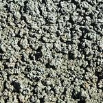 Popcorn weathering (Big Blue Bentonite, Sentinel Butte Formation, Upper Paleocene; Coal Vein Trail, Roosevelt National Park, Little Missouri Badlands, North Dakota, USA) 4 thumbnail