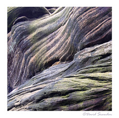 Brimham Rock (Dave Snowdon (Wipeout Dave)) Tags: canoneos80d davidsnowdonphotography brimhamrocks abstract rock colours nationaltrust northyorkshire yorkshiredales yorkshiredalesnationalpark