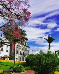 gorgeous day (ekelly80) Tags: azores portugal sãomiguel october2018 fall pontadelgada town city park garden jardimanterodequental green trees flowers colors blue sky beautiful church clouds palmtrees pink