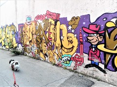 Art Critic (navejo) Tags: montreal quebec canada dog gizmo mural grafiti cowboy elephant purple yellow alleyway