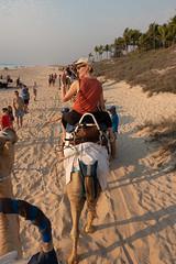 10003387.jpg (KevinAirs) Tags: camels kevinairs ocean camel travel westernaustralia ©kevinairswwwkaozcomau sand sky landscape landscapes beach australia sea jacquihawkins