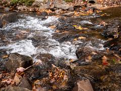 20181104-162217-053 (JustinDustin) Tags: 2018 attraction autumn blairsville fall ga georgia nga northamerica northgeorgia seasonal us usa unitedstates vogelstatepark year