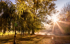 Morgenstund... (rwfoto_de) Tags: deutschland europa sachsen herbst jahreszeiten fels steine zittauergebirge oybin