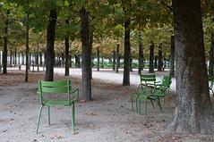 Let's Write an Autumn Poem in Paris! (tamasmatusik) Tags: paris párizs france autumn trees fall herbst cityscape city poem poetry mood september sony sonynex nex3n sigma sigmalens 30mm park tree chair milc jardin jardindestuileries