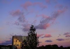 Evening in Amsterdam (Ineke Klaassen) Tags: amsterdam amsterdamnieuwwest nieuwwest view sky lucht zonsondergang pink roze skies 020 nederland ned netherlands thenetherlands noordholland sony sonya6000 sonyimages sonyalpha sonyalpha6000 sonyilce6000 ilce evening avond avondlicht bluehour sunset sundown 10faves 10fav 10favs 1025fav 500views 15faves 15favs 15fav