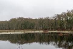 quabbinreservoir2018-126 (gtxjimmy) Tags: nikond7500 nikon d7500 quabbinreservoir newengland massachusetts belchertown ware autumn fall reservoir quabbin lakewallace