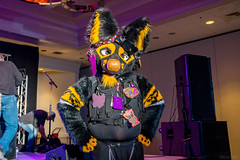 DSC08925 (Kory / Leo Nardo) Tags: pacanthro pawcon paw con pac anthro convention fur furry fursuit suiting mascot sona fursona san jose doubletree hotel california dance party deck animals costuming pupleo 2018