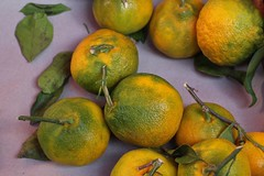 Green/Yellow oranges (I like green) Tags: vegetables fruit produce streetmarket palermo sicily italy food fresh
