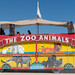 The Zoon Animals