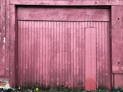 Barn Garage Door (Lux Llama Productions) Tags: barn apple picking fall natick framingham lookout farms family couple 2018 apples many plenty lot hay leaf leaves crate box peach pear plant plants maple trees tree grass grape grapes bench orange picnic red
