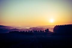 Nebellandschaft (kennwitt) Tags: nebel sonnenaufgang natur landschaft sonne baum eos himmel dämmerung