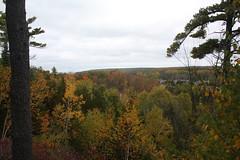 IMG_6327 (sjj62) Tags: fishcreekwi doorcountywi fall autumn woods doorcounty fishcreek 40d