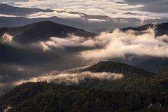 The Great Smokies (NYRBlue94) Tags: sunrise mountain northcarolina smoky greatsmokies appalachian clingmans clingmansdome early morning tennessee