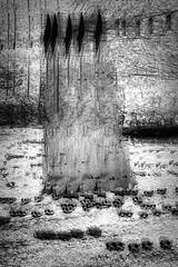 The Reaper (beelzebub2011) Tags: canada britishcolumbia vancouver stanleypark multipleexposure bw monochrome skulls