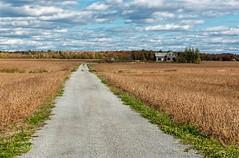 (PaulPagéPhotos) Tags: abandoned rural d850 fallcolours country cornfield farms farmhouse